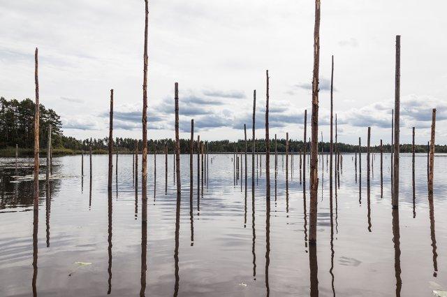 Markus Vallien, När mänskligt upprepade former, möter den för oss obegripliga, tillsynes slumpmässiga ordning vi kallar Naturen. Foto:  Jonas Lindström