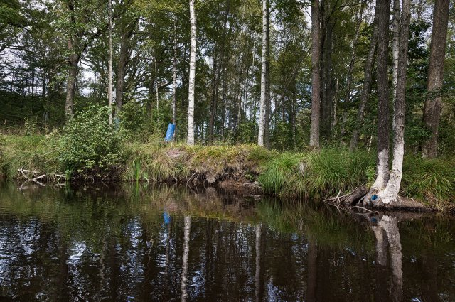 Åsa Jungnelius, Landskapsmåleri. Foto:  Jonas Lindström